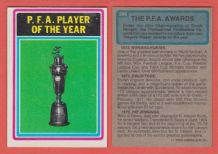 P.F.A Player of the Year Trophy 296
